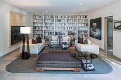 Library Wall Unit Living Room Design Ideas, Pictures, Remodel and Decor