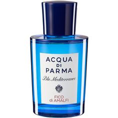 Acqua Di Parma Blu Mediterraneo Fico Di Amalfi (€89) ❤ liked on Polyvore featuring home, home decor, floral home decor, acqua di parma and mediterranean home decor