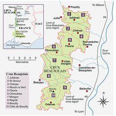 Beaujolais: revival of the fittest | decanter.com