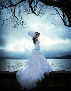 Pretty Bridal Gown - Great Photo !