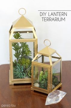 DIY Lantern Terrarium Tutorial--for the truly black thumb--these are faux succulents