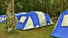 summer camp Forest Camp, Outdoor Gear, Tent, Camping, Summer, Cabin Tent, Campsite, Tentsile Tent, Outdoor Tools
