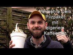 Vermehre Deine Pilzpaket Pilzzucht mit frischem Kaffeesatz. Das Pilz Substrat bekommt neue Nährstoffe und Du kannst weiter Pilze anbauen. - Pilzpaket