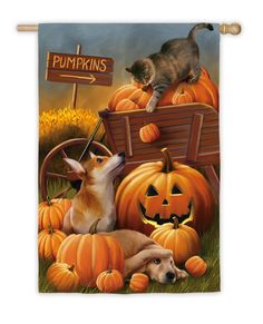 Look at this Evergreen Cat & Dog Pumpkin Patch Outdoor Flag on today! Retro Halloween, Chat Halloween, Halloween Games For Kids, Kids Party Games, Halloween Pictures, Holidays Halloween, Halloween Decorations, Halloween Parties, Halloween Printable