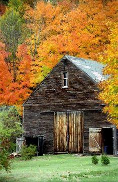 Autumn barn.
