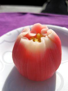 wagashi... Tulip blooming in the sun