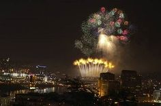 Webn Fireworks 2010 : Pictures & Video   Today24News
