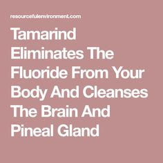 Tamarind Eliminates The Fluoride From Your Body And Cleanses The Brain And Pineal Gland Tamarind Fruit, Sources Of Vitamin B, Pineal Gland, Brain Fog, Be Natural, Cleanses, Vitamins, Remedies, Health