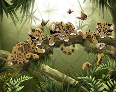 3 junge Leoparden