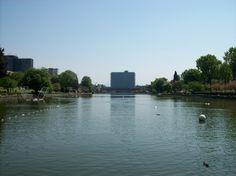Sarà completato entro il mese di giugno del 2015 l'acquario sotto il laghetto dell'Eur a Roma