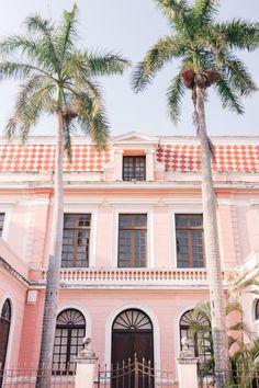 Safari Print Pants in Mérida | Gal Meets Glam