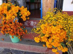 marigolds for your altar