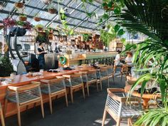 The Commissary at the Line Hotel in Los Angeles. Delicious brunch in a greenhouse. Beautiful setting and the food's amazing, too!