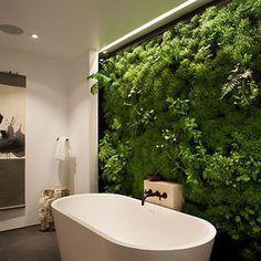 Moss Wall In Bathroom #house #plant #bathroom #wall #green Garden Bathroom, Bathroom Plants, Bathroom Spa, Bathroom Ideas, Natural Bathroom, Moss Wall, Nature Decor, Beautiful Bathrooms, Plant Decor