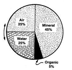 Figure 1: Most soils contain four basic components
