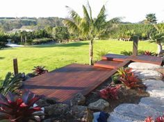 Tropical Garden Ideas Nz sub tropical garden design nz - google search | garden design