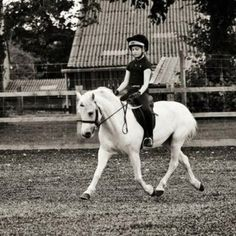 Beautiful picture of a wonderfully engaged pony and her little rider! Pony Saddle, Pony Horse, Horse Girl, Horse Love, White Horses, Mini Horses, Horse Photography, Photography Ideas, Most Beautiful Animals