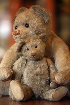 Cute, old teddy bears