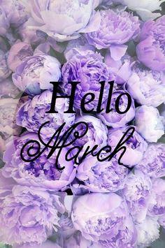 Immagine di march, flowers, and hello