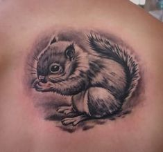 Grey Ink Squirrel Tattoo On Right Back Shoulder