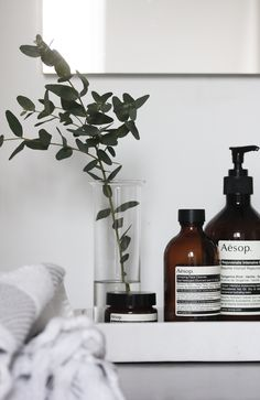 Aesop products | Elisabeth Heier, March 2014 [Original post in Norwegian]