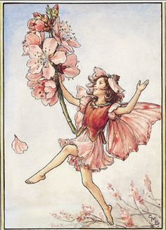 Cicely Mary Barker's flower fairies are so sweet. I love believing fairies hide among my flowers.