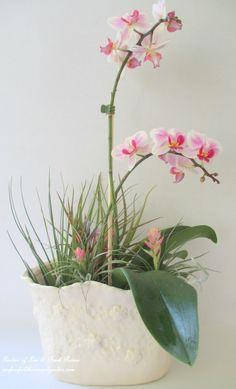 Orchids & Air Plants Centerpiece ~ Get Creative with Air Plants!  http://ourfairfieldhomeandgarden.com/air-plant-palette/