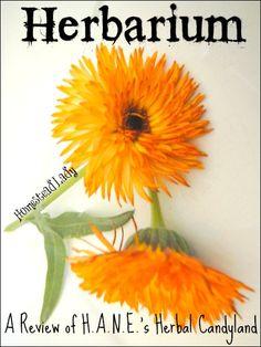 Herbarium l A Review of HANEs Website l Homestead Lady (.com)