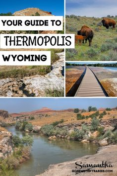 Thermopolis Wyoming is home to a lot of awesome attractions in Wyoming that your should know about! Hot springs state park, buffalo, museums, and delicious country cuisine. Ready for a cowboy breakfast and a soak in a natural medicinal hot springs? Head to Thermopolis! #thermopolis #wyoming #thingstodointhermopolis #wyomingwithkids #thermopoliswithkids #hotspringsstatepark