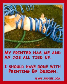 Photo Print Advertising, Print Ads, Commercial Printing, All Tied Up, Has Gone, Print Magazine, My Job, Thats Not My, Magazines