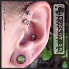 Healed double #forwardhelix and #conch piercings with #titanium jewelry by #anatometal (at Evolution Piercing) Conch Piercings, Peircings, Piercing Tattoo, Body Piercing, Forward Helix, Titanium Jewelry, Piercing Ideas, Body Mods, Evolution