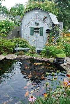 A koi pond is a wonderful landscape detail that contributes to an environment perfect for meditation