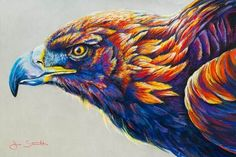 Golden Eagle by Jen Starwalt Pastel Drawing, Pastel Art, Acylic Painting Ideas, Animal Paintings, Animal Drawings, Eagle Drawing, Color Pencil Sketch, Chalk Pastels, Soft Pastels