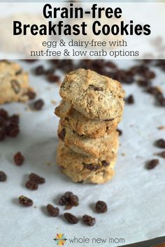 These Grain Free Paleo Breakfast Cookies are egg free with low carb and nut-free options. You can have these Grain-free Breakfast Cookies any time of the day. They're super filling too! Paleo Breakfast Cookies, Paleo Cookies, Breakfast Recipes, Brunch Recipes, Breakfast Ideas, Easy To Make Breakfast, Free Breakfast, Breakfast Bars, Nut Free