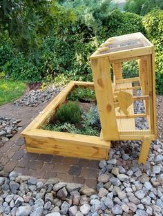 Outdoor habitat for Ornate and Desert Box Turtles. Easy to access hinged dome