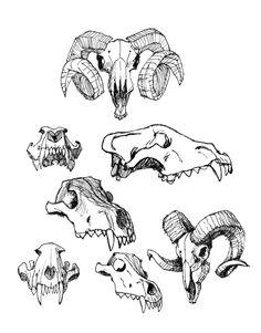 #pendrawing #draw #skull #ram