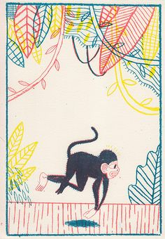 Monkey, via Flickr.
