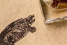 Snapping Turtle Classic 2 x 3 Inch Stamp