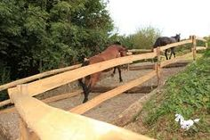 Aktivstall - Treppe Horse Paddock, Horse Stables, Horse Farms, Dream Stables, Dream Barn, Horse Care Tips, Horse Ranch, Future Farms, Horse Trailers