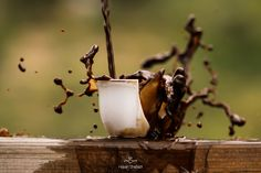 The Cup I by Hassan Shehadi