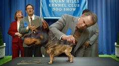 Audi's Super Bowl Ad Stars a Horrifying 'Doberhuahua' Hybrid of a Chihuahua Combined With a Doberman