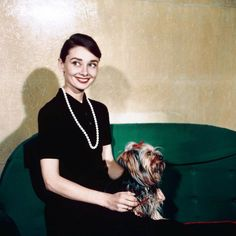 Audrey Hepburn photographed with Mr. Famous at the Hotel Hasslerin Rome, Italy, April 1958