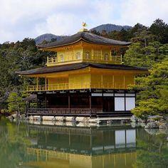 Золотой павильон Кинкакудзи сегодня #сегодня #Кинкакудзи #Киото #Япония #ЗолотойПавильон #золото #прекрасное#архитектура #японскийсад  #японскаятехнология  #сад #парк #архитектура #мидокоро