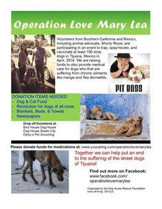 #animalrescue #animallovers #deslyspetgrooming #deslyspg #rescue #volunters #help #donation #media #animalcare #losangeles #tijuana #mexico #pitboss #westhollywood #westla #pooch #pets #animals #doglovers
