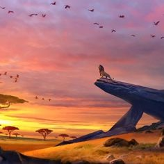 By: Stephan Martiniere Lion King. By: Stephan Martiniere Lion King Simba's Pride, Lion King Musical, Lion King Fan Art, Lion King 2, Lion King Movie, Le Roi Lion Disney, Simba Disney, Disney Lion King, Disney Art