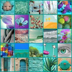 A Treat of Turquoise! World Of Color, Color Of Life, Colour Schemes, Color Combos, Collages, Living Colors, Color Collage, Photo Mosaic, Shades Of Turquoise