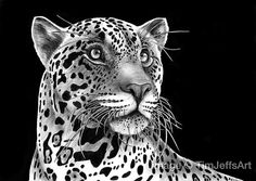 Hey, I found this really awesome Etsy listing at https://www.etsy.com/listing/163977195/exclusive-conservation-print-jaguar-ink