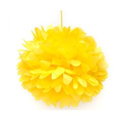 Going to hang some pompoms from my classroom ceiling :)