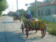 Bliznatsi ,Bulgaria ,