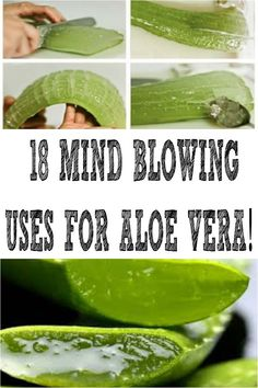 Pin on Anti Aging Beauty Routine Aloe Vera Uses, Aloe Vera For Skin, Aloe Vera Face Mask, Aloe Uses, Diy Aloe Vera Gel, Coconut Oil Beauty, Oily Skin Treatment, Health And Nutrition, Health Tips